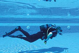 Plongée sous-marine et apnée